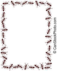 Ant Frame - Illustrated frame made of lots of ants