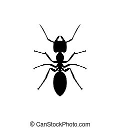 ant icon, vector insect logo