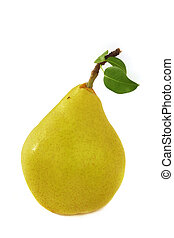 ant on a yellow pear