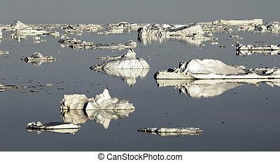 Antarctic fantasy