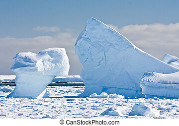 Antarctic glaciers in the snow