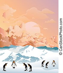 Antarctic penguins at dawn - Colony of Antarctic penguins on...