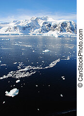 Antarctic sea with ice floes