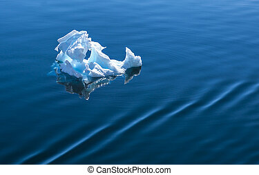 Antarctica Ice floating on the sea