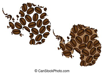 Antarctica map - Antarctica - map of coffee bean, Antarctica...