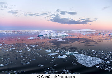 Antarctica - Weddell Sea