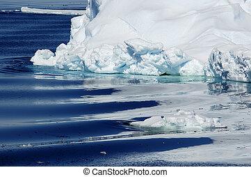 antarktisk, renhet