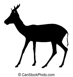 Antelope - Abstract vector illustration of antelope on white...