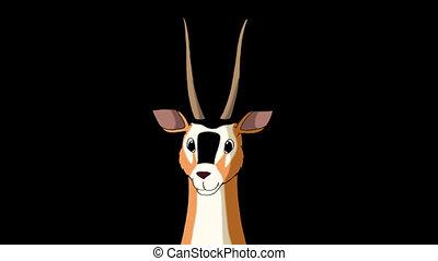 Antelope Gazelle Closeup Alpha - Wild antelope (gazelle)...