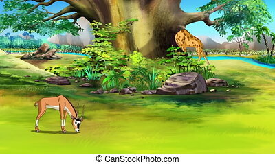 Antelope grazing in the meadow UHD - Wild antelope (gazelle)...