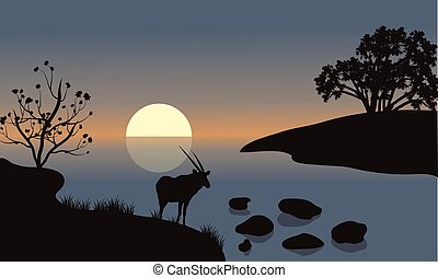 Antelope silhouette on the riverbank