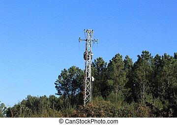 antena, en, medio, del, bosque