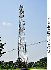 Antena poles