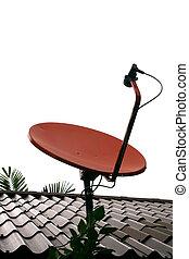 antenna parabolica, rosso