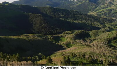 antenna vadászterület, közül, zöld erdő, és, hegyek, noha, nyom