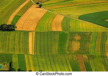 antenne, Felter, grønne, Udsigter, Høst, foran