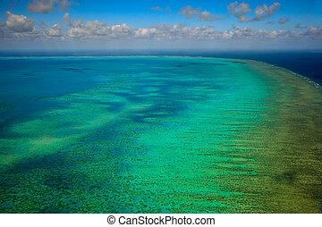 antennen beskådar, av, arlington, rev, hos, stor spärr rev marin park