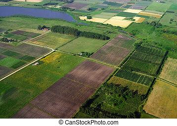 antennen beskådar, av, lantbruk, grön, fält