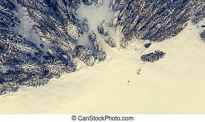 antennen beskådar, forest., äng, höjande, snö