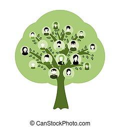 antepassados, adn, genealogia, árvore, isolado, ilustração
