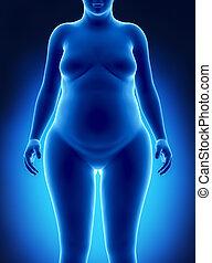 anterior, mujer, grasa, vista