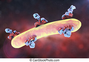 Antibodies attacking bacterium. Immunoglobulins and...