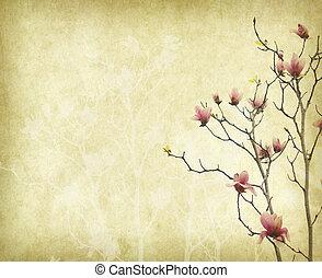 anticaglia, fiore, vecchio, vendemmia, magnolia, carta, fondo