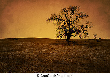 anticaglia, quercia, albero nudo, grunge