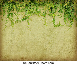 antiek oude, textuur, papier, groene, grunge, klimop