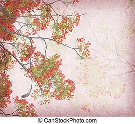 antieke , pauw, oud, ouderwetse , boompje, papier, achtergrond, bloemen