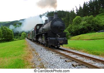 antigüedad, tren, cruce, un, bosque