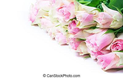 antigüidade, cor-de-rosa, branca, isolado, rosas