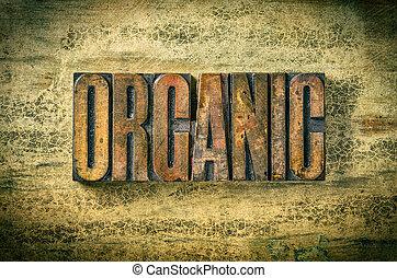 antigüidade, madeira, blocos,  Letterpress,  -, imprimindo, orgânica, tipo