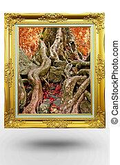 antigas, antigüidade, ouro, quadro, em, fundo, árvore, sobre, fundo branco