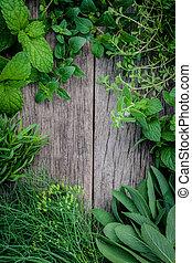 antigas, aromático, cima, fundo, vário, verde, jardim, hortelã limão, sábio, temperos, madeira, orégano, , ervas, jogo, menta, tomilho