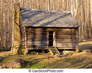 antigas, cabana, em, montanhas esfumaçadas