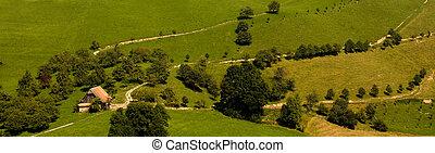 antigas, casa fazenda, em, a, verde