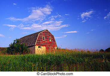 antigas, celeiro, com, farmyard