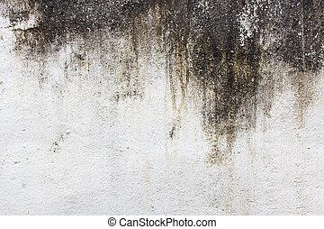 antigas, cimento, parede, grunge, fundo