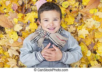 antigas, estação, seis, parque, anos, outono, criança