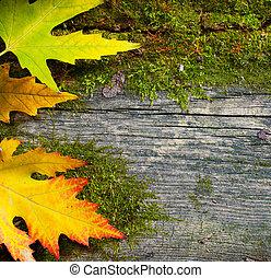 antigas, folhas, outono, madeira, fundo, grunge, arte