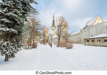 antigas, inverno, fortificação, parque, tallinn, vista