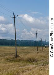 antigas, madeira, campo, telefone polos, fundo, rural