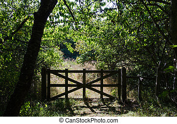 antigas, madeira, portão