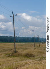 antigas, madeira, telefone polos, em, campo, rural, fundo
