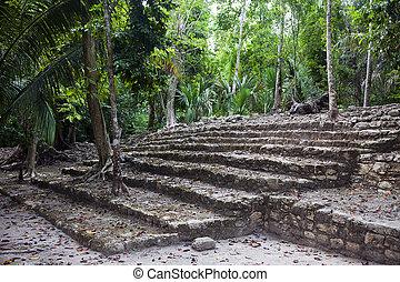 antigas, pedra, passos, para, a, madeiras
