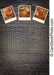 antigas, polaroid, jardinagem, quadros, ligado, rústico, madeira, fundo