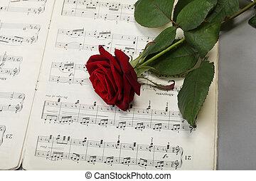 antigas, rosa, notas, folha música, vermelho