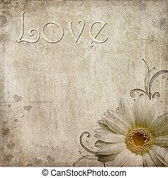 antigas, roto, vindima, texto, fundo, margarida, amor