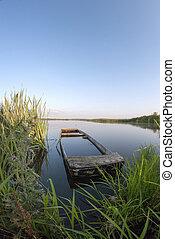 antigas, sunken, barco madeira, ligado, a, lago